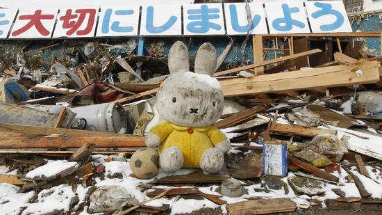 huGO-BildID: 21291764 A stuffed toy is seen amidst rubble at an area hit by earthquake and tsunami in Kesennuma, north of Japan, March 17, 2011. REUTERS/Kim Kyung-Hoon (JAPAN - Tags: DISASTER ENVIRONMENT IMAGES OF THE DAY) Quelle: Reuters