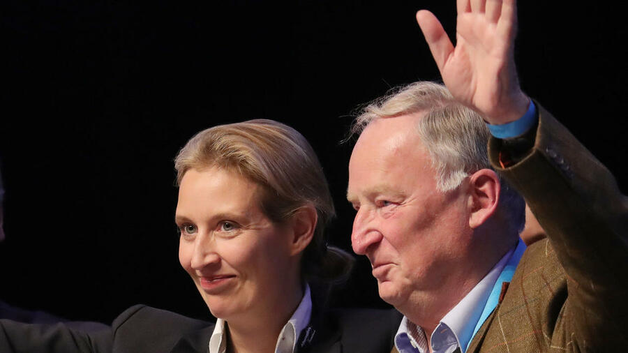 Nackt afd weidel 'Leaked' email