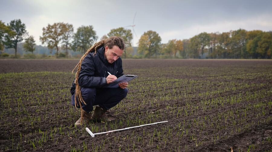 """Jan Ritter, Gründer und CTO von Seedforward, kontrolliert den """"Feldaufgang"""" von Wintergetreide, dessen Saatgut mit einer von Seedforward entwickelten Nährstoffbeize ummantelt worden ist. Quelle: Seedforward"""