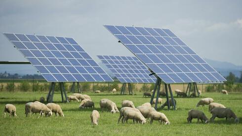 Die EU-Kommission bewertet das Erneuerbare-Energien-Gesetz als staatliche Beihilfe. Quelle: dapd