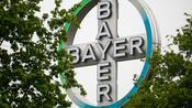 Unkrautvernichter: Gericht zweifelt Bayers Glyphosat-Vergleich an – Aktie verliert deutlich