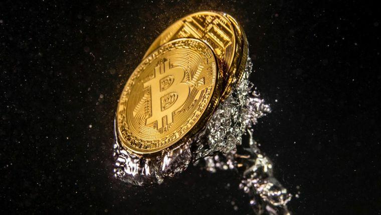 beste investitionsseiten für bitcoin wie viel geld haben die wollnys