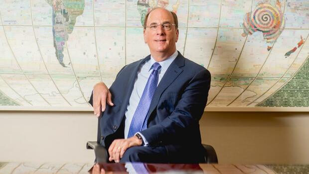 """Blackrock-CEO Fink: """"Der Kapitalismus ist zu weit gegangen"""""""