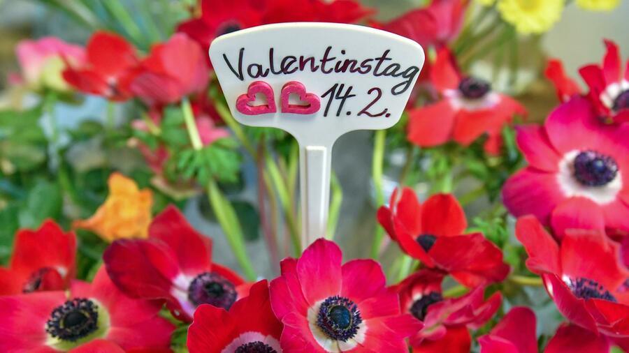 Valentinstag wettbewerb