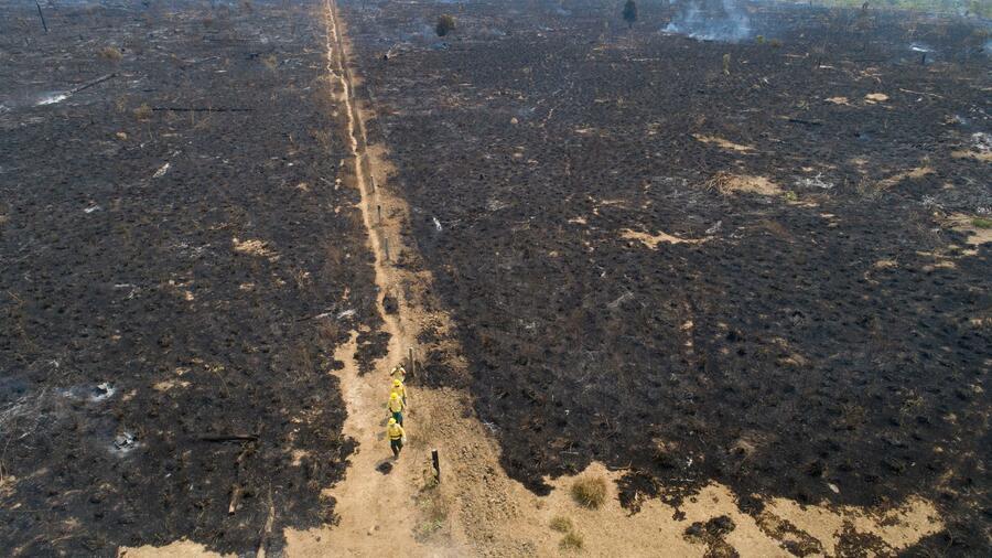 Mitarbeiter der staatlichen brasilianischen Umweltbehörde IBAMA unterhalten sich mit einem Bauer auf einer verbrannten Fläche. Zahlreiche Politiker haben Zweifel an der Umsetzung des EU-Handelsabkommens mit dem südamerikanischen Staatenbund Mercosur. Quelle: dpa