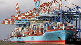 Maersk-Containerschiffe in Bremerhaven. Quelle: dpa