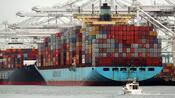 Container-Anbieter: Das Vorbeben vom P&R-Drama – was Anleger aus der Pleite vom Magellan-Fonds lernen können