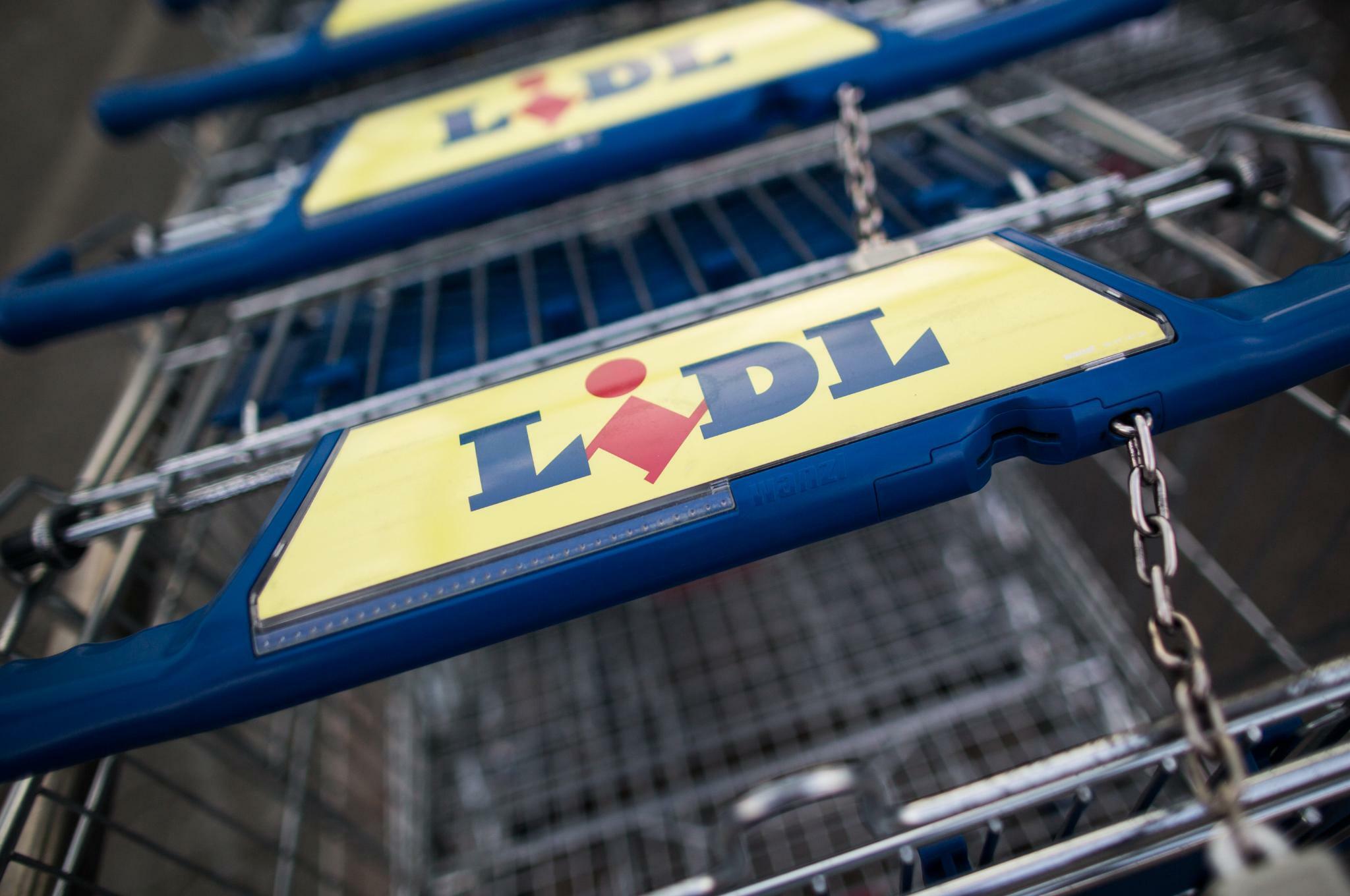 Wie SAP und Lidl Hunderte Millionen Euro versenkt haben