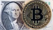 Kryptowährungen: Der Bitcoin fällt und fällt – das bringt Start-ups in Schwierigkeiten