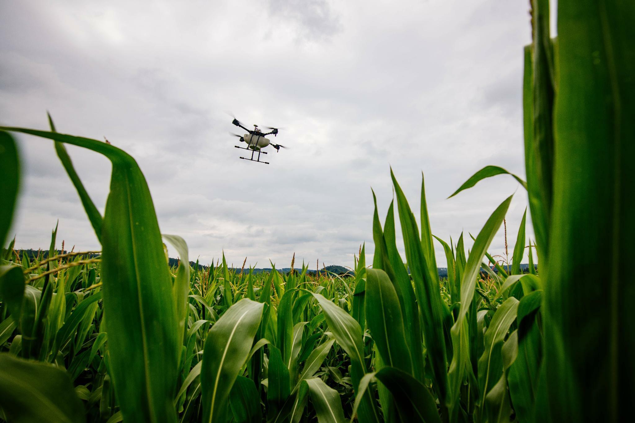 So profitieren Anleger von der Agrar-Revolution