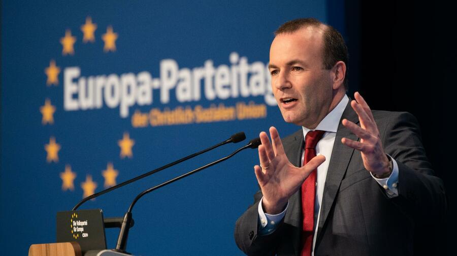 grüne programm europawahl