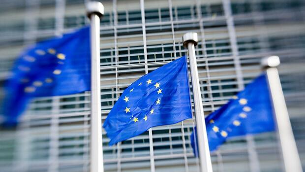 Danuta Hübner: EU-Abgeordnete will Kommissionsplan zu Euro-Clearing abschwächen