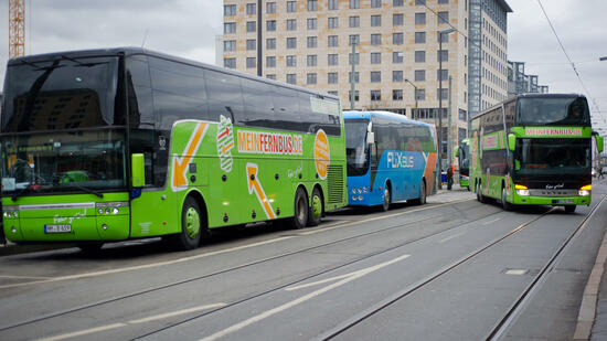 Fernbusse in Frankfurt