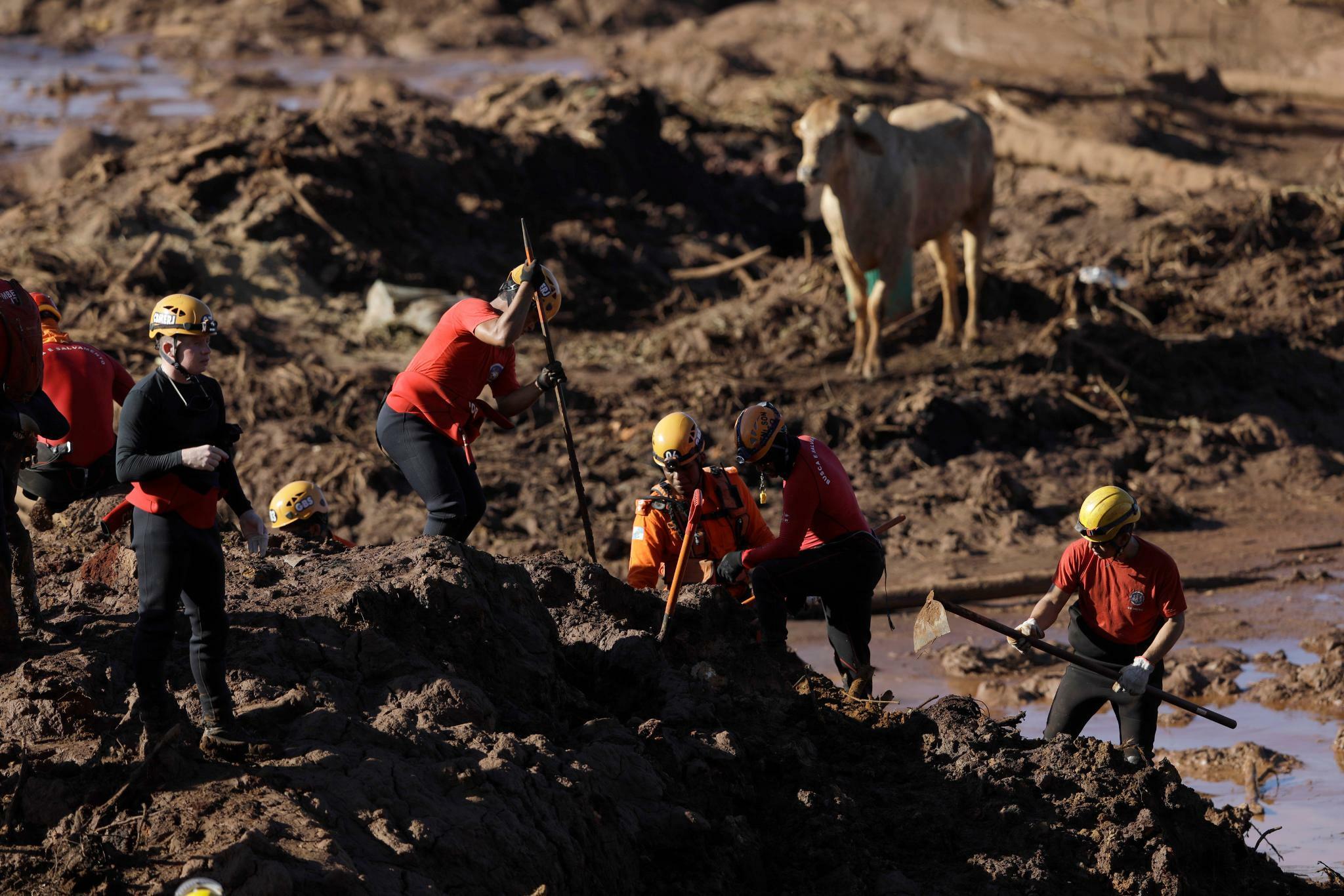 Vorwürfe gegen Vale und TÜV Süd wegen Dammbruchs in Brasilien