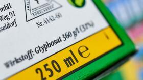 Bayer-Tochter Monsanto: Unkrautvernichter Glyphosat in Babywindeln in Frankreich gefunden