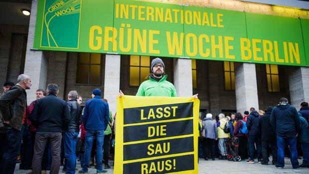 Internationale Grüne Woche: Forderungen nach mehr Tier- und Umweltschutz in der Landwirtschaft