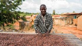 aldi discounter setzt auf fair gehandelten kakao. Black Bedroom Furniture Sets. Home Design Ideas