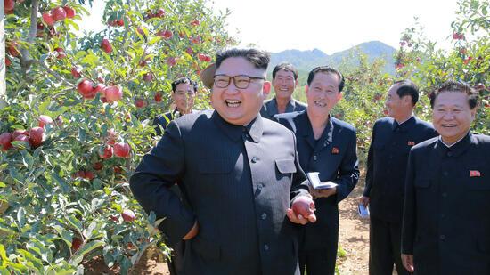 """""""Dementer US-Greis"""" : Kim Jong Un giftet gegen Trump"""