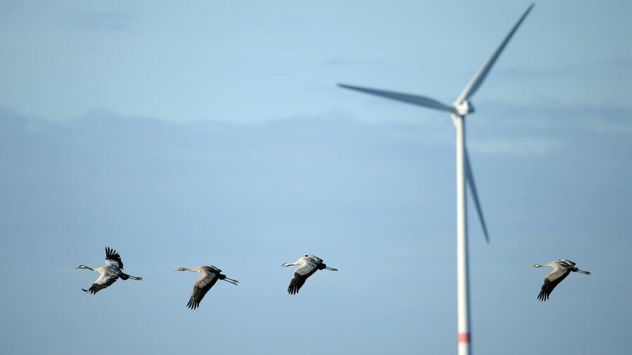 Gutes jahr für windkraft kühles wetter erhöht energieverbrauch