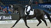 Pferdesport: Dressurreiterin Bröring-Sprehe siegt nach Verletzungspause
