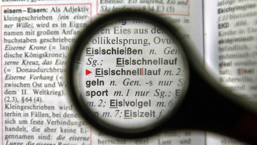 Fingierte Lexikoneinträge: Das kleine Lexikon des gehobenen Unsinns