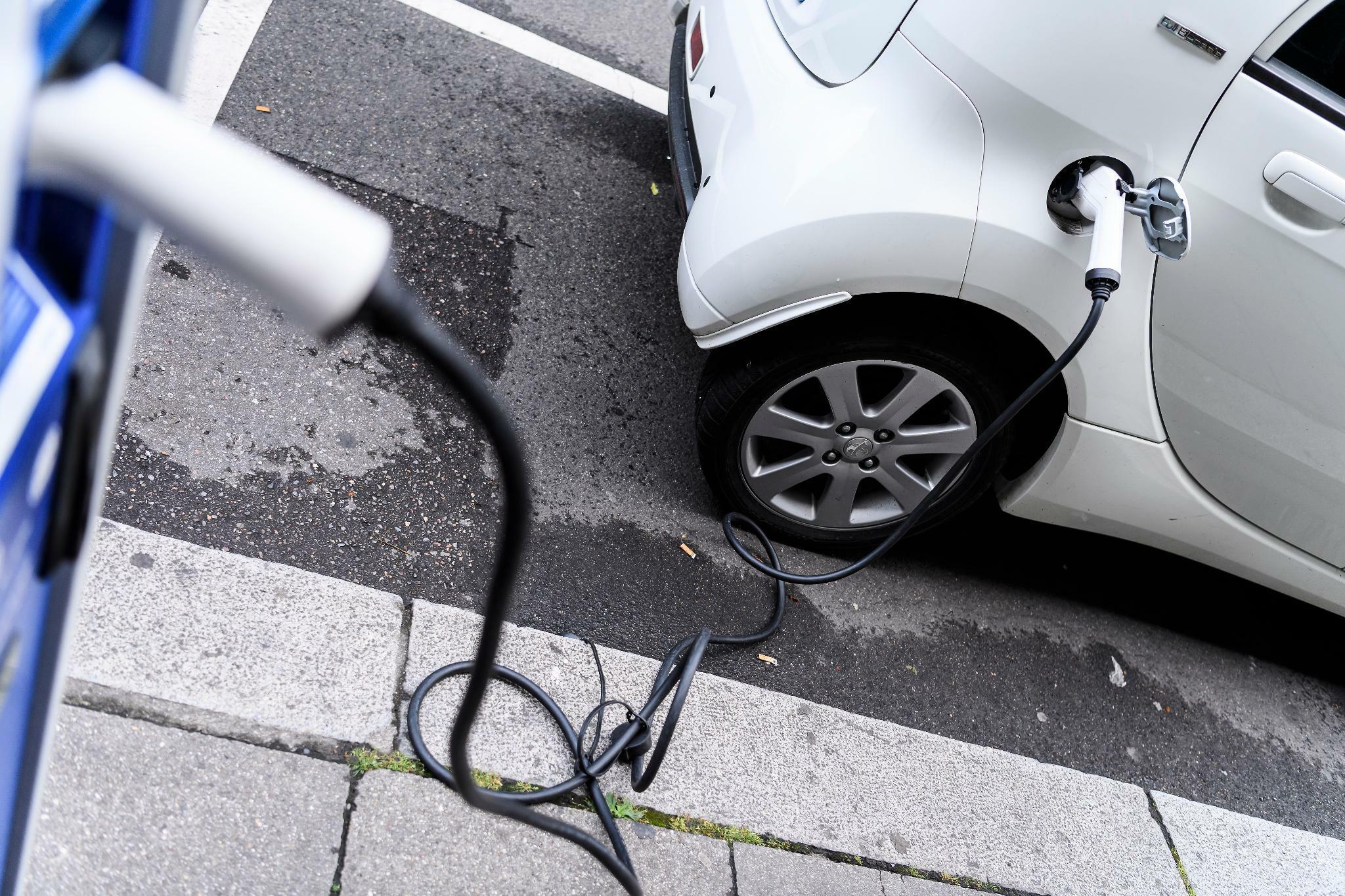 FDP: Bundesregierung rechnet sich E-Autos schön