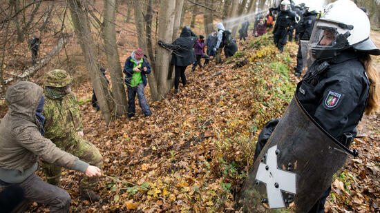 Gericht stoppt vorläufig Rodungen im Hambacher Forst