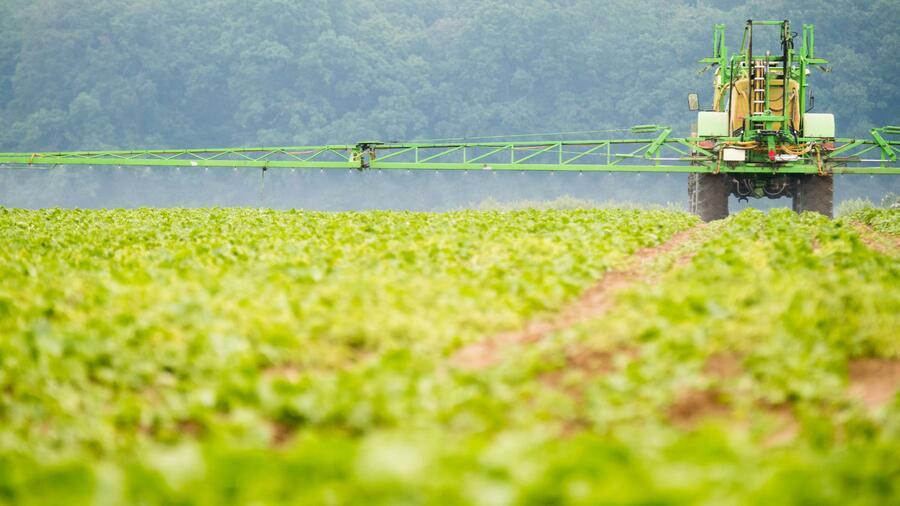 Glyphosat-Prozess: Monsanto kann mit einer deutlich geringeren Strafe rechnen