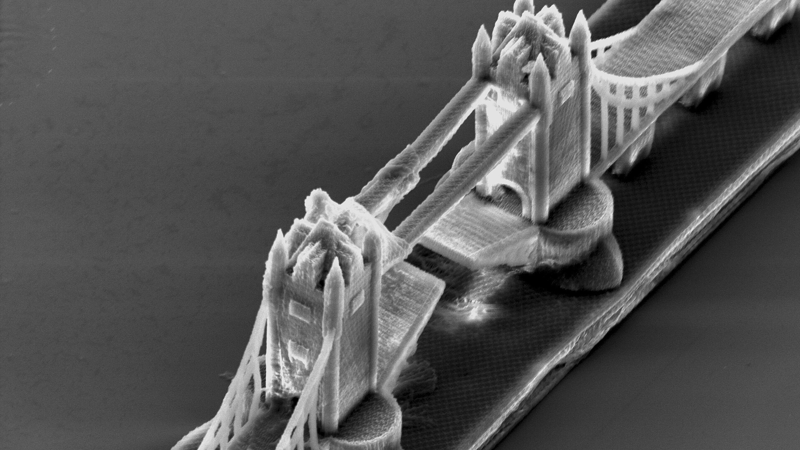 3-D-Technik: Der Nano-Formel-1-Bolide aus dem Drucker
