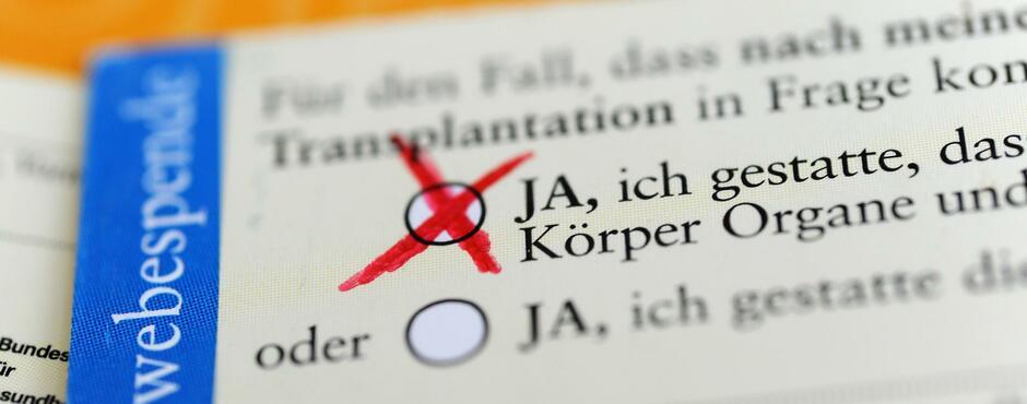 Neue Regeln für Organspenden: Über diese Vorschläge debattiert der Bundestag heute