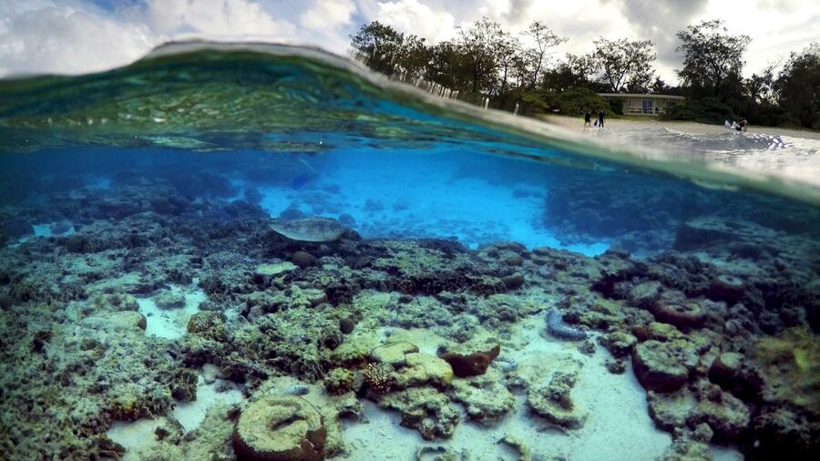 Das Great Barrier Reef in Australien leidet unter dem Klimawandel. Quelle: Reuters
