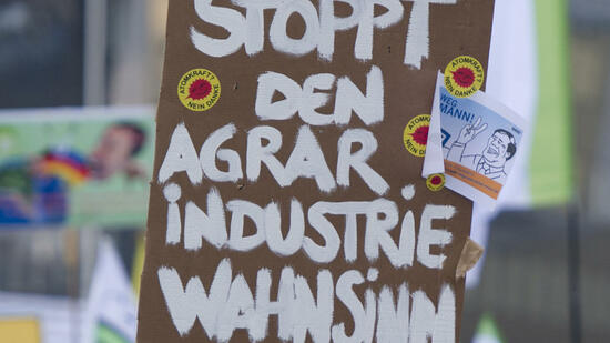 Demonstration gegen die Agrarindustrie in Berlin. Quelle: dpa