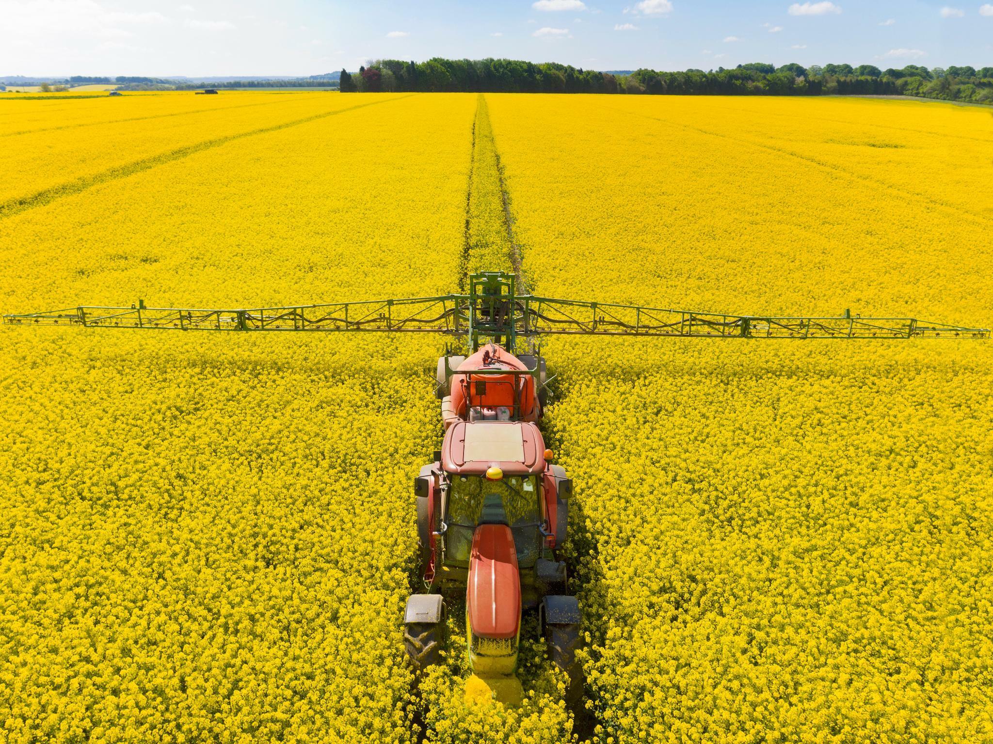 Umstrittener Biosprit: So kann der Durchbruch in Europa gelingen
