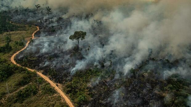 handelsabkommen-brasiliens-pr-sident-droht-mercosur-bund-wir-machen-allein-weiter
