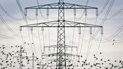Übernahme in der Energiebranche: Kommunen haben Sonderkündigungsrechte – Eon muss um Herzstück von Innogy bangen