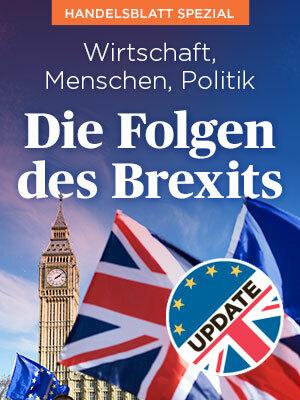 Brexit Multimedia Special