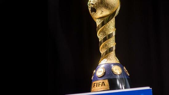 FIFA-Lob für Confed-Cup-Gastgeber Russland