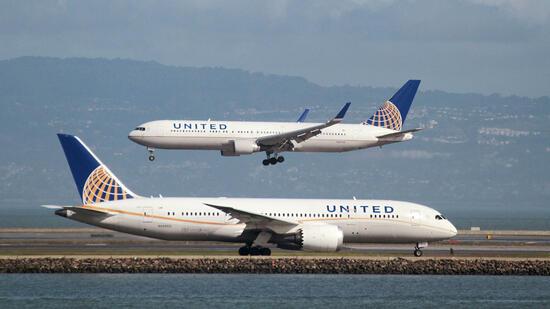United Airlines Weltgrößter Hase Simon stirbt bei Flug in die USA