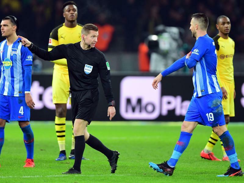 DFB-Sportgericht verhandelt Ibisevic-Strafe erneut