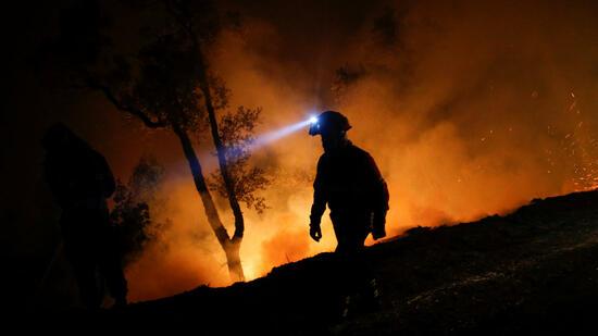 Portugal: Ministerrücktritt nach neuen Waldbränden