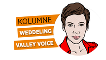 Valley Voice