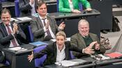"""Nach Austritt aus Fraktion: Rechtspopulismus-Forscher: """"Beobachtung der AfD ist voraussichtlich nicht mehr aufzuhalten"""""""