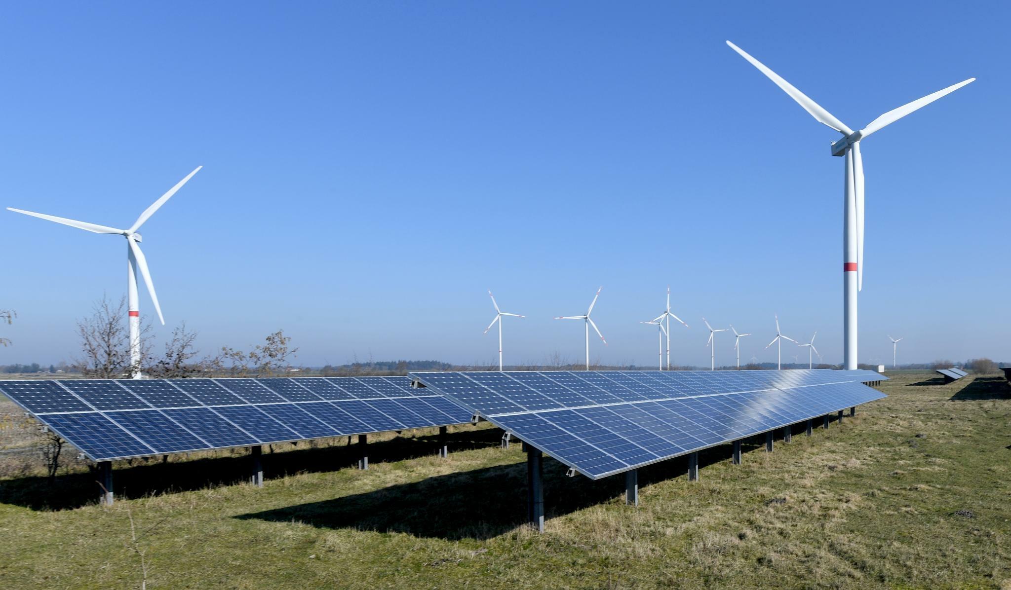 Erneuerbare Energien machen fast die Hälfte des Stroms aus