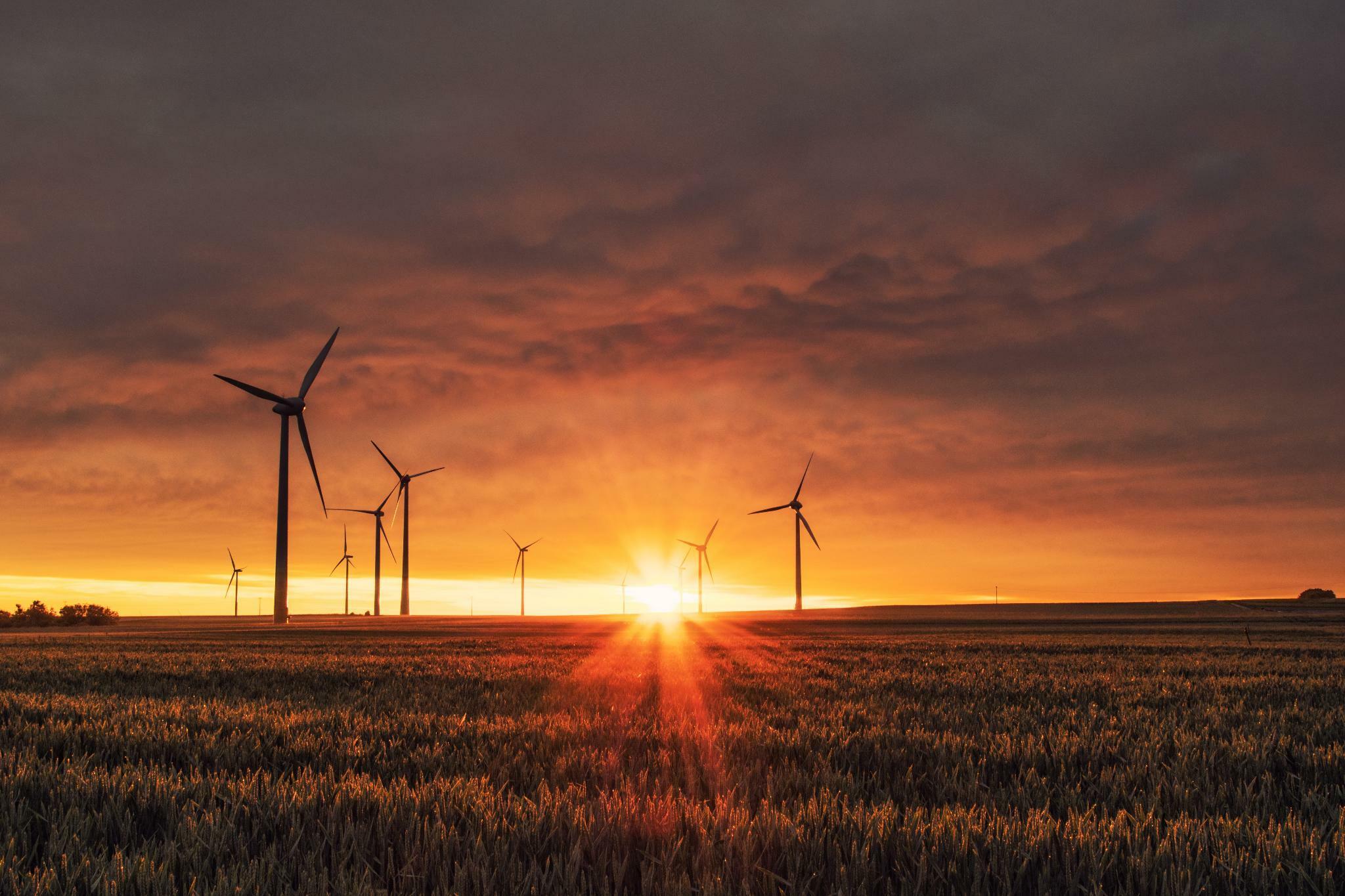 Klare Regeln sollen den Markt für grüne Finanzanlagen voranbringen