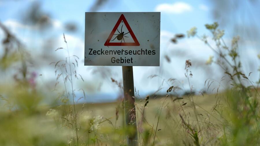 FSME-Zecken breiten sich nach Norddeutschland aus